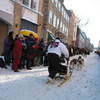 Photo: Dogsled race