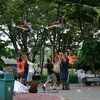 Photo: (keyword aerial)