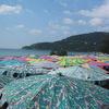 Photo: Beach umbrellas