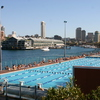 Photo: Andrew (Boy) Charlton Pool and Finger Wharf