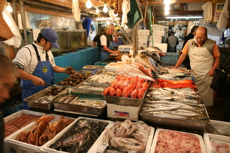 Photo various fish for Japan fish market