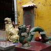 Photo: Tiger and dragon
