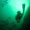 Photo: Scuba diving
