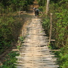 Photo: Bamboo bridge