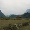 Photo: Dry rice paddies