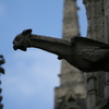 Photo: Gargoyle