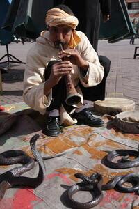 Photo: Snake charmer