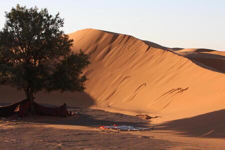 Photo: Sand dune