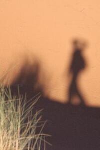 Photo: Shadow