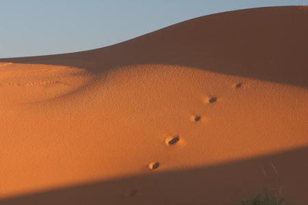 Photo: Footprints